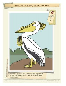 Drawing Instructions American White Pelican by John James Audubon Step 7