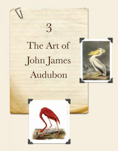 The Art of John James Audubon