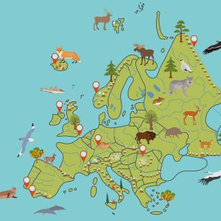Europe map with rivers, mountains, animals, lakes and natural wonders
