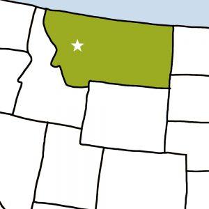 USA Bingo: Montana