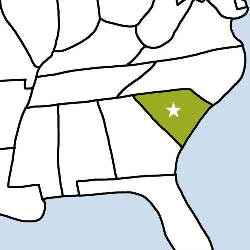 USA Bingo: South Carolina
